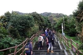 สักพักเริ่มเป็นบันไดที่ชันขึ้น // Seongan Itchulbong peak