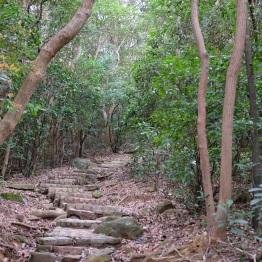 Maclohose No.3, Hong Kong