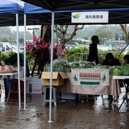 Water Garden organic Farmers Market, ไทเป ไต้หวัน