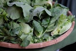 ผักแขนงดูอึ๋ม กวักมือเรียกให้ซื้อ //Water Garden organic Farmers Market, ไทเป ไต้หวัน