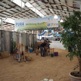 The Royal Melbourne Show