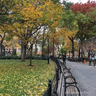Autumn in NYC